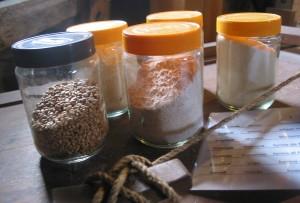 Van tarwe tot gries, meel en bloem