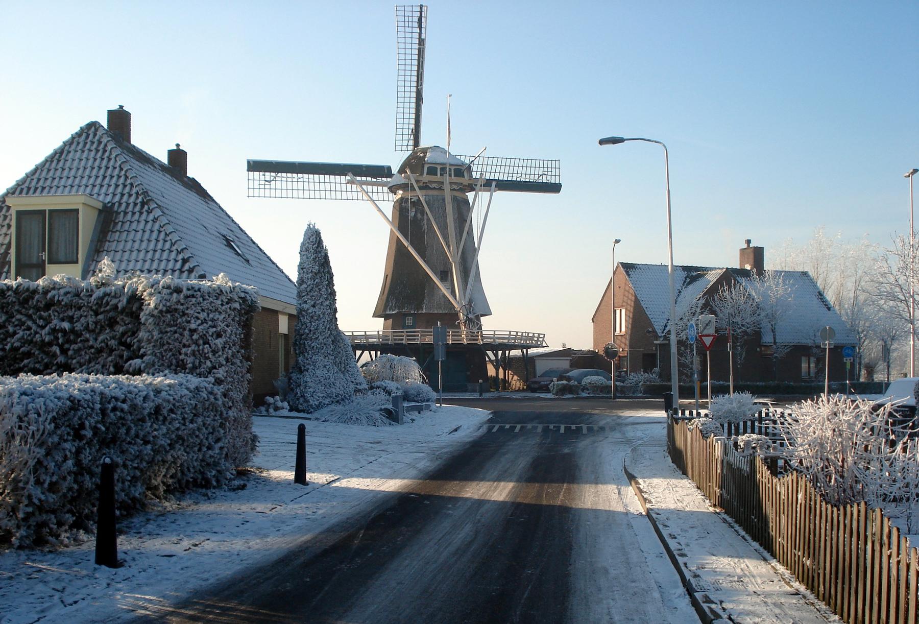 Windlust winter