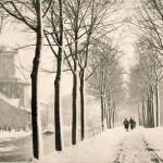 1880: De run- en snuifmolen Windlust in Delft (werd in 1885 naar Nootdorp overgeplaatst)