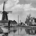 1950: Ansichtkaart met korenmolen Windlust (fokwieken en oud-Hollands)