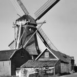 1964: de molen met bijgebouwen